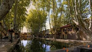Bassin de l'étang à Cucuron