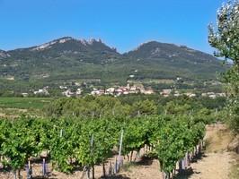 Vignoble et village de Vacqueyras